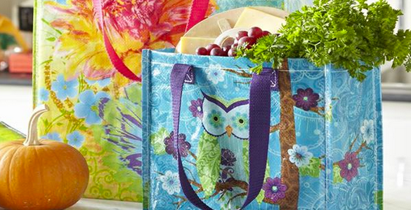 Freebies2Deals-Pier1-ReusableTote