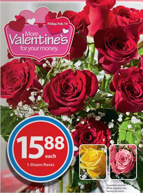 One Dozen Roses $15.88!! - Freebies2Deals