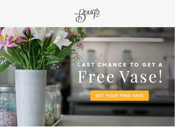 The Bouqs Free Vase With Bouquet Purchase 10 Savings Today