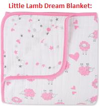 little-lamb-dream-blanket