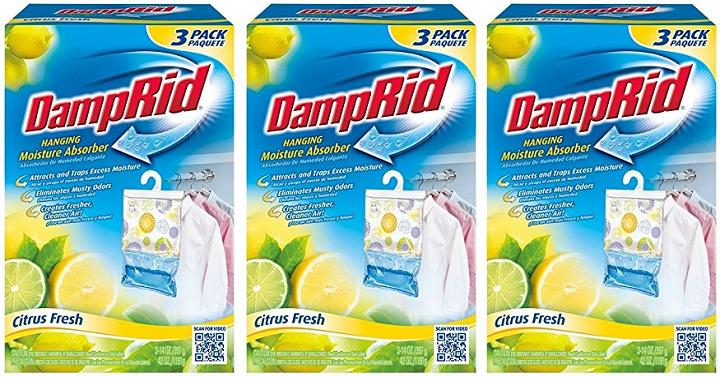 damp-rid-moisture-absorber