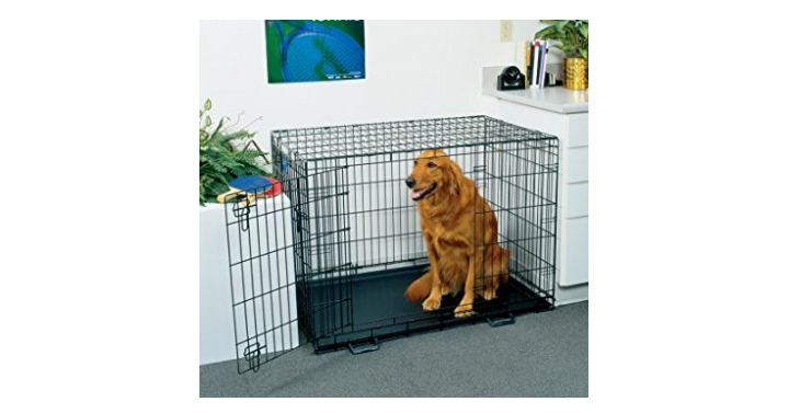 animal crate