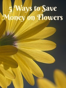5 ways to save money on flowers