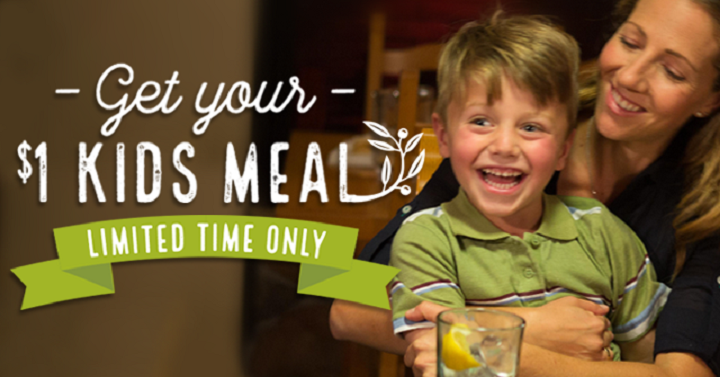 Kids Meals With Purchase Of An Adult Entree At Olive