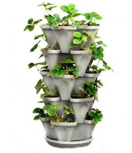 5 tier strawberry planter