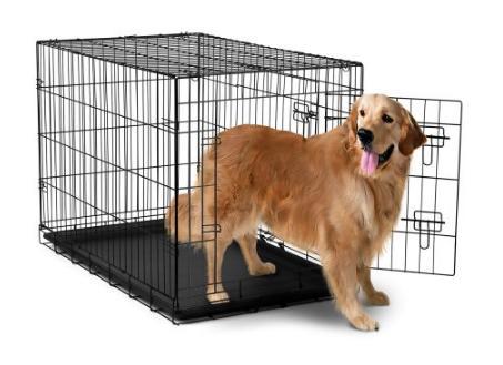 dogcrate