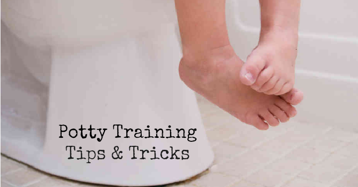 potty training f2d