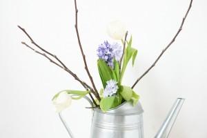 spring-flowers-623701_1280