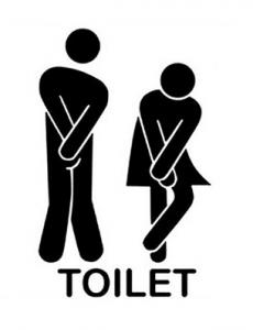 toilet decals