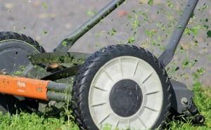lawn-mower-938561_640