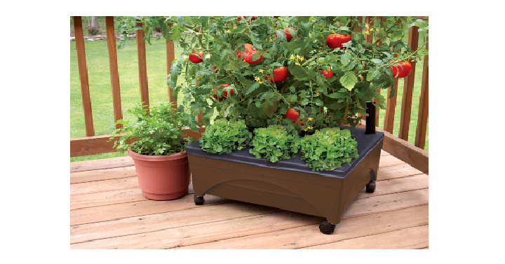 Earth Brown Raised Garden Bed Only $19.98! (Reg. $29.98) - Deals & Coupons
