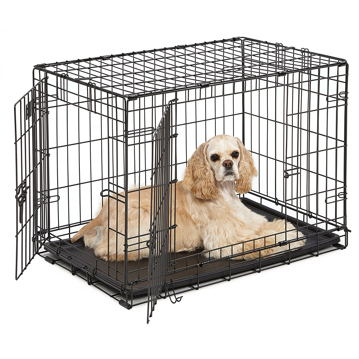 Midwest Icrate 30 Quot Double Door Folding Dog Crate Only 20