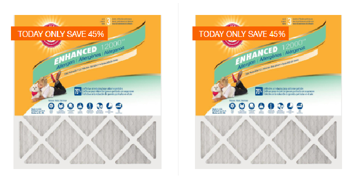Today Only October 5th Home Depot Takes Up To 45 Off Select Arm Hammer 12 Pack Air Filters You Can Get The For 54 Shipped