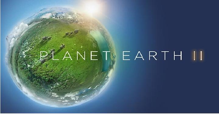 Картинки по запросу Planet Earth və Planet Earth II